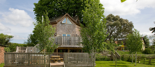 Tree house 4.original.full