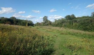 Nature reserve.full